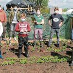 Gemüseackerdemie in der Soeste-Schule Barßel
