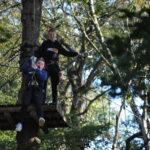 Schulausflug in den Kletterwald
